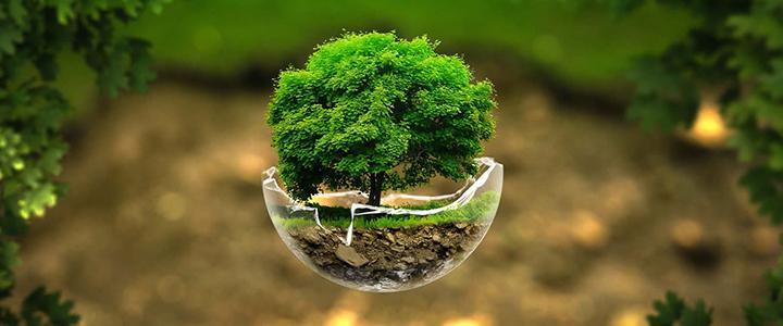 greentech2021.jpg